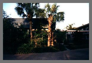 pic04_motel_tampa.jpg