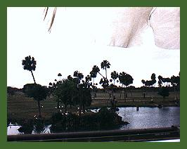 pic19_plains_busch.jpg